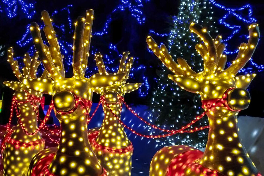 Jacksonville Area Holiday Events