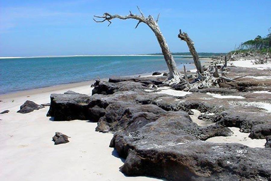 Big Talbot Island State Park Blackrock Beach