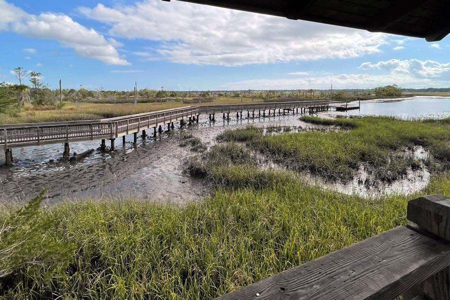 Castaway Island Preserve boardwalk